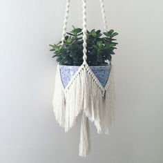 Bohemian macrame plant hanger with a fringe