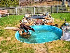 Dog Friendly Backyard, Dog Backyard, Ponds Backyard, Backyard Ideas, Pool Ideas, Backyard Landscaping, Backyard Designs, Dog Swimming Pools, Dog Pond