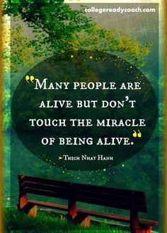 Touch the miracle of being alive. --Thich Nhat Hanh #quote