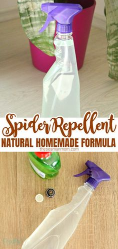 This natural spider repellent can be used for both your home & your garden! Safe and natural, this spider repellent DIY won't harm your family or pets and has a very pleasant smell!  #easypeasycreativeideas #spiderrepellent #diyspiderrepellent #spiderrepellentdiy #homemade #homemadespiderrepellent #cleaning #cleaningtips