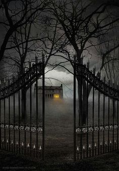 Gate Entry, The Enchanted Wood photo via sandie .I left the gate open, c'mon over! Spooky Places, Haunted Places, Abandoned Places, Haunted Houses, Creepy Houses, Spooky House, Haunted Mansion, Enchanted Wood, Dark Places