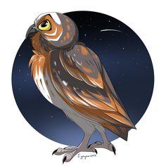 """Owl illustration / Gufo, illustrazione - """"Guardians of GaHoole - Gylfie"""", Art by ignigeno on deviantART"""