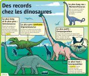 Des records chez les dinosaures - Le Petit Quotidien, le seul site d'information quotidienne pour les 6 - 10 ans !