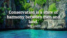 Aldo Leopold, Conservation, Men, Guys, Canning