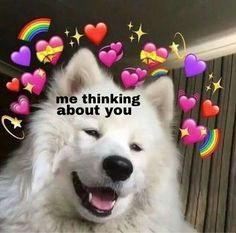 46 images about ✧*・✧heart emoji memes✧*・✧ on we heart it Memes Humor, 100 Memes, Best Memes, Funny Memes, Meme Meme, Cute Text, Memes Lindos, You Are My Moon, Heart Meme