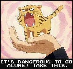 Palmtop Tiger, Aisaka Taiga's nickname (Toradora)
