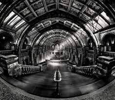 Photo Natural History Museum by Richard Beresford Harris on 500px