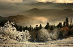 Almost Winter - Gorgeous photo by Janusz Wanczyk of Beskid Sądecki mountains in Poland. http://janusz-wanczyk.pl/moje-perelki-fotograficzne-prawie-zima/#more-446 , https://1x.com/photo/47592/category/landscape/latest-additions/almost-winter