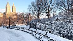 Winter in Central Park, #Manhattan #NYC #NewYork #iGottaTravel