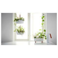 hang succulents in IKEA Bittergurka hanging planters on patio