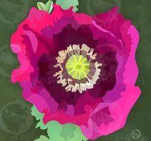 Pink Poppy   snewdesigns   Digital