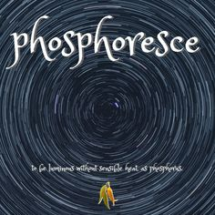 beautiful words from Macquarie Dictionary - phosphoresce - to be luminous without sensible heat, as phosphorus. Taste And See, Beautiful Words, Vocabulary, Poetry, Feelings, Ideas, Tone Words, Pretty Words