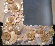 split white polished nautilus and abalone seashell mirror