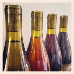 Wind Gap Wines -- Chardonnay, Pinot Gris, Pinot Noir, Syrah