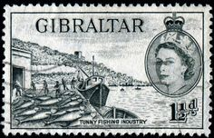 1953 Gibraltar-Tunny Fishing Industry