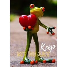 Hump Day Humor, Wine Jokes, Baby Animals, Cute Animals, I Heart Organizing, Frog Pictures, Funny Frogs, Images Disney, Valentines Day Wishes