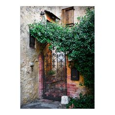 Tuscany Italy Photography Mounted matted by RSpencerPhotography
