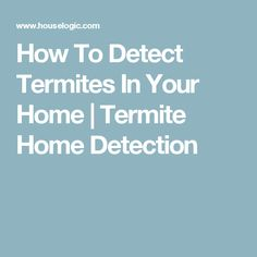 How To Detect Termites In Your Home | Termite Home Detection