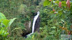 Git Git Wasserfälle - Check more at https://www.miles-around.de/asien/indonesien/bali-mystische-tempel-und-gruene-reisfelder/,  #Affen #Bali #Indonesien #Natur #Reisebericht #Tempel #Wasserfälle
