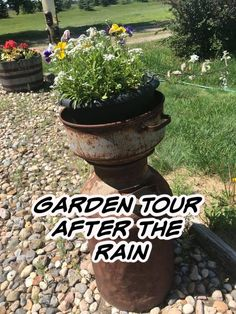 Join me on my garden walk where to see how my square foot garden, container garden and straw mulch methods are doing. Garden Container, Square Foot Gardening, Rain Barrel, Permaculture, Join, Outdoor Decor, Garden Pots, Rain Water Collector