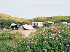 Kamperen in de duinen, op 300 meter van de duinen, 350 meter van het strand... Camping De Lakens in Zandvoort is genieten!