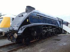 Based on the North Yorkshire Moors Railway, LNER number 60007 Sir Nigel Gresley stands on display at RailFest, National Railway Museum. Diesel Locomotive, Steam Locomotive, East Coast Main Line, Union Of South Africa, Flying Scotsman, National Railway Museum, Steam Engine, North Yorkshire, Newcastle