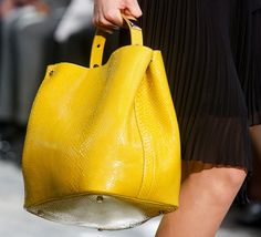 Christian Dior Spring 2014 Handbags (2)
