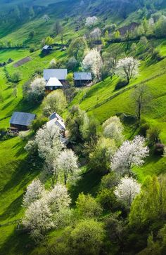 Springtime in Romania. Here you relax with these backyard landscaping ideas and landscape design. Places Around The World, Travel Around The World, Around The Worlds, Wonderful Places, Beautiful Places, Visit Romania, Romania Travel, Spring Is Here, Belleza Natural