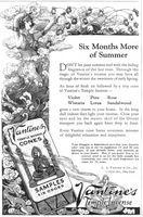 Vantines Temple Incense Cones 1924 Ad Picture