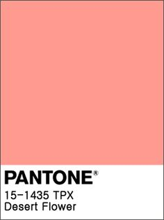 Nautical Color Palettes, Nautical Colors, Web Design For Beginners, Salmon Wedding, Peach Bedroom, Material Board, Peach Aesthetic, Color Meanings, Color Naranja