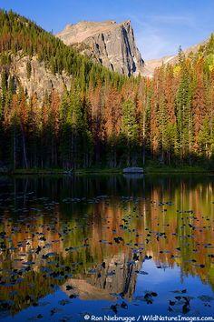 Nymph Lake, Rocky Mountain National Park, Colorado; photo by Ron Niebrugge