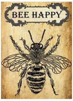 Happy Inspirational Vintage card bee happy , /user/susiehomemakerco please join , / susiehomemaker bee happy , /user/susiehomemakerco please join , / susiehomemaker Images Vintage, Vintage Cards, Vintage Bee, Bee Images, Vintage Fonts, Vintage Typography, Bee Wasp Hornet, I Love Bees, Bee Skep