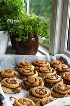 Bløde og luftige kanelsnegle | Forstadsmor No Bake Cake, Danish, Muffin, Pie, Sweets, Snacks, God Mad, Cookies, Baking