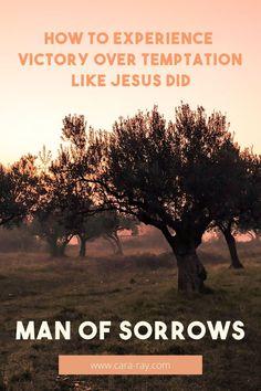 Jesus Face, God Jesus, Christian Living, Christian Faith, Luke Show, Agony In The Garden, Keep Praying, How To Stay Awake