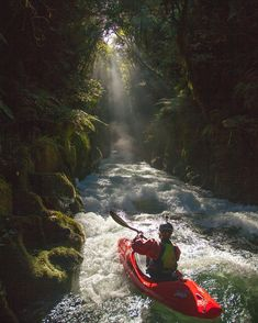 Whitewater Kayak A deep forest cavern Kayak Paddle, Canoe And Kayak, Kayak Fishing, Kayaking Tips, Whitewater Kayaking, Canoeing, Parkour, Life Is An Adventure, Adventure Is Out There
