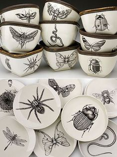 Insect Crockery