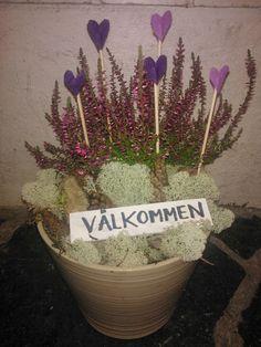 Återbruk av Åsa.Li: Blommor
