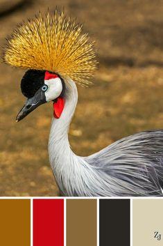 ZJ Colour Palette 174 #colourpalette #colourinspiration