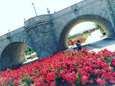 """3 Me gusta, 1 comentarios - JSBenavides   #DiseñaTuMapa (@jsbenavides_) en Instagram: """"Paseo por Madrid Río y Disfrutando el Domingo! Lets goooo  #felizdomingo #madridrío #madrid #paseo…"""""""