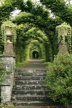 Birr Demesne formal garden arbor Birr Castle demesne formal garden arbor, Co. Garden Arbor, Garden Paths, Garden Stairs, Garden Archway, Garden Entrance, Driveway Entrance, The Secret Garden, Secret Gardens, Nature Aesthetic