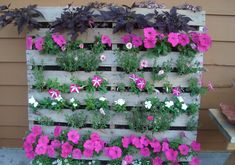 perfect for a narrow balcony or limited space. check out this we pallet garden. perfect for a narrow balcony or limited space. check out this we pallet garden. perfect for a narrow balcony or limited space. Garden Art, Garden Design, Home And Garden, Herb Garden, Garden Modern, Garden Mesh, Micro Garden, Easy Garden, Vegetable Garden