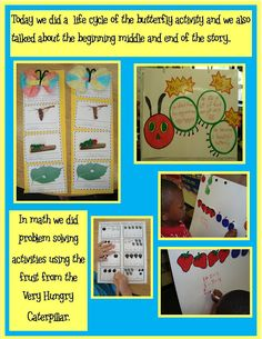 Butterfly Life cycle idea and  sequencing beginning, middle and end of the story