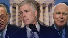 Endangered Democrats Face 'Political Suicide' in Gorsuch Fight