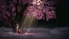 24 Chinese Animation Wallpaper - Painting Of Purple Tree Chinese Animation S. - Best of Wallpapers for Andriod and ios Anime Wallpaper 1920x1080, Free Animated Wallpaper, Wallpaper Animes, Cool Anime Wallpapers, Live Wallpapers, Animes Wallpapers, 1080p Wallpaper, Live Wallpaper For Pc, Tree Wallpaper