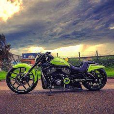 Santa Cruz CA: Badass V-rod #harley #harleydavidson #vrod #vrodmuscle #nightrod #night #nightout #sky #clouds #green #chopper #muscle #americanmuscle #custom #culture #swag #low #lowcarb by goenkgoes_garage