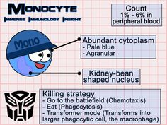Immense Immunology Insight: Monocytes & macrophages simplified What to Eat Boost Your Immune System If … Technology Careers, Technology Articles, Technology World, Medical Technology, Technology Innovations, Energy Technology, Technology Gadgets, Nursing Mnemonics, Medical Laboratory Science