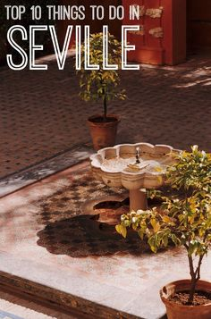 Here Are The Top 10 Things Not To Be Missed In Seville!
