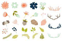 Dakota Vector Rustic Nature Elements by Cocoa Mint on Creative Market
