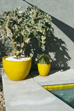 Acid Yellow Pots at the Hotel Lautner. love the same yellow in the pool trim tile