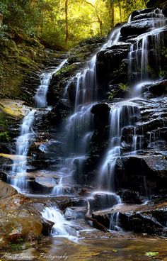 ~~Sylvia Falls ~ Valley of the Waters, Wentworth Falls, Blue Mountains, NSW Australia by Henry Brosius~~